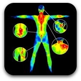 thermal image of whole body